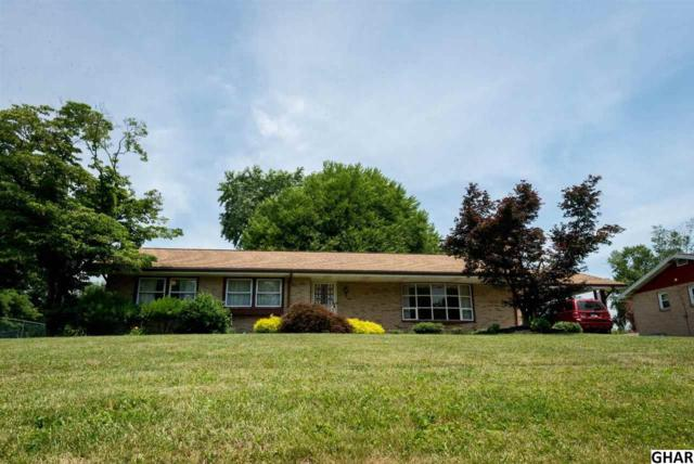 1446 Pieffers Ln, Harrisburg, PA 17113 (MLS #10309219) :: The Joy Daniels Real Estate Group