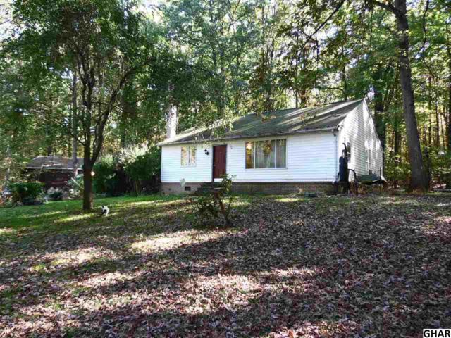 611 Gutshall Rd, Boiling Springs, PA 17007 (MLS #10309229) :: The Joy Daniels Real Estate Group