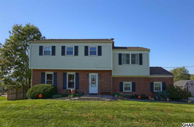 18 Clear View Road, Dillsburg, PA 17019 (MLS #10309239) :: The Joy Daniels Real Estate Group
