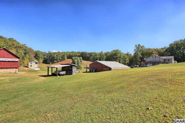 6376 Spring Rd, Shermans Dale, PA 17090 (MLS #10309242) :: The Joy Daniels Real Estate Group