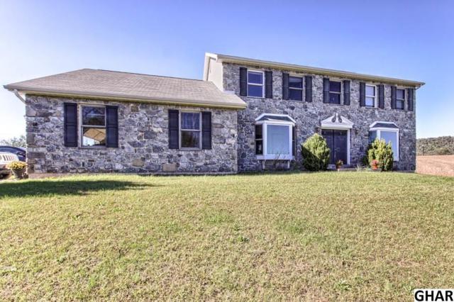 600 Center Rd, Newport, PA 17074 (MLS #10309244) :: The Joy Daniels Real Estate Group