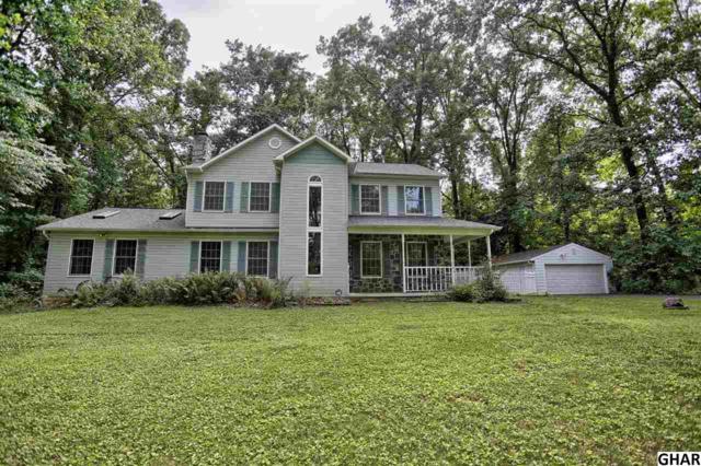 972 Locust Grove Road, Middletown, PA 17057 (MLS #10303589) :: The Joy Daniels Real Estate Group