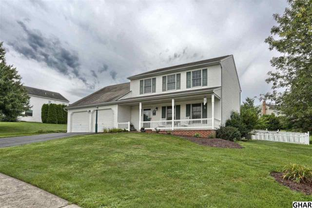 463 Coachman Lane, Palmyra, PA 17078 (MLS #10306265) :: The Joy Daniels Real Estate Group