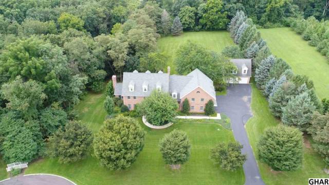 3 Fox Run, Hummelstown, PA 17036 (MLS #10306402) :: The Joy Daniels Real Estate Group