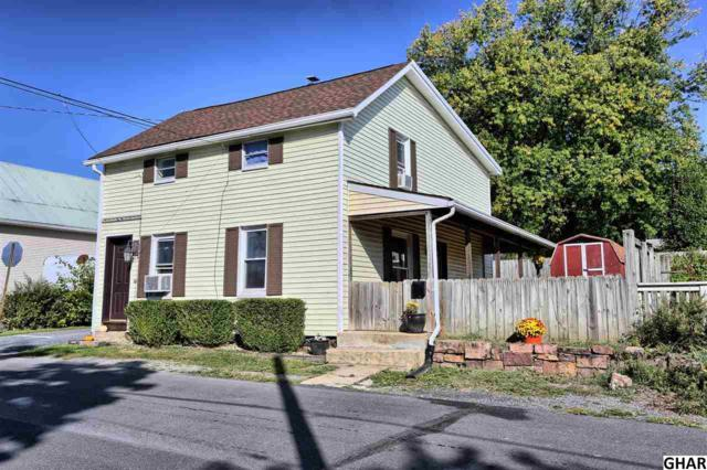 207 Spruce Street, Marysville, PA 17053 (MLS #10308013) :: Teampete Realty Services, Inc