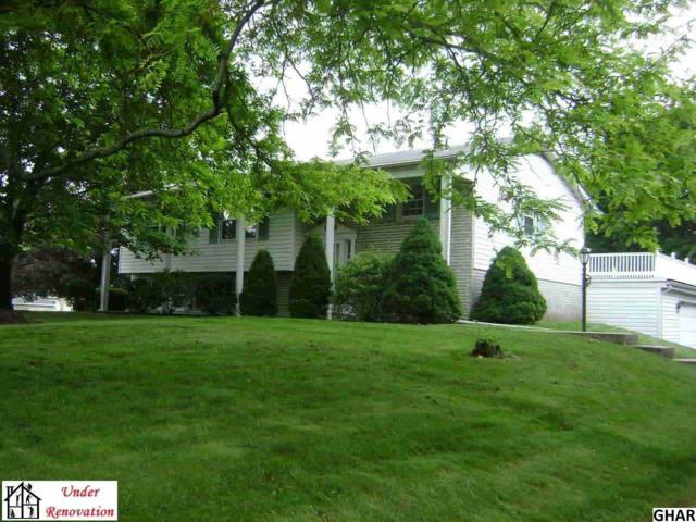 34 Capitol Hill Rd., Dillsburg, PA 17019 (MLS #10308616) :: The Joy Daniels Real Estate Group