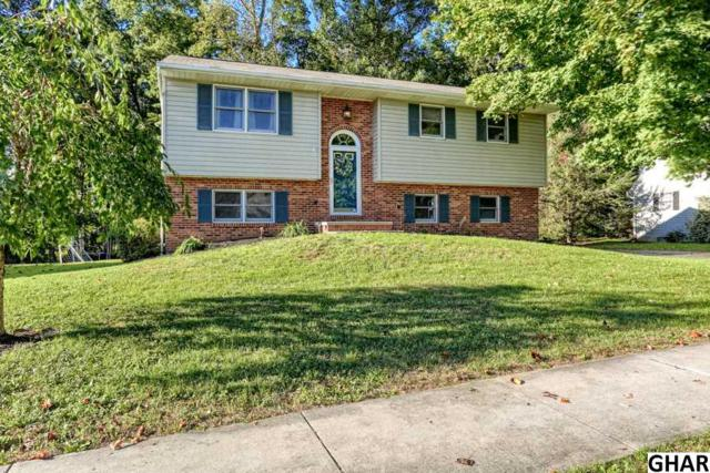 30 Chestnut Run, Elizabethtown, PA 17022 (MLS #10309077) :: The Joy Daniels Real Estate Group