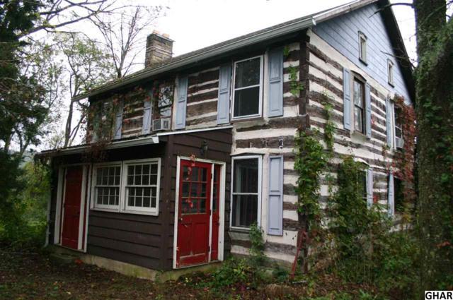 1627 Newport Road, Duncannon, PA 17020 (MLS #10309192) :: The Joy Daniels Real Estate Group