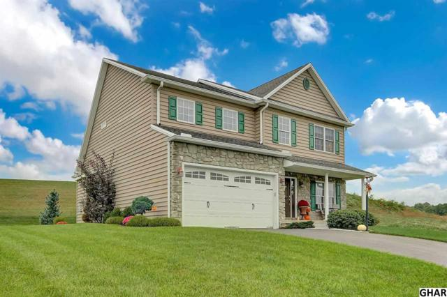 2088 Powderhorn Road, Middletown, PA 17057 (MLS #10308799) :: The Joy Daniels Real Estate Group