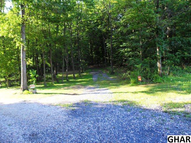 Turner Lane Lot #4, Shermans Dale, PA 17090 (MLS #10306606) :: The Joy Daniels Real Estate Group