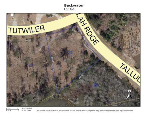 Lot A-1 Tutwiler Cove, Hattiesburg, MS 39402 (MLS #111489) :: Exit Southern Realty
