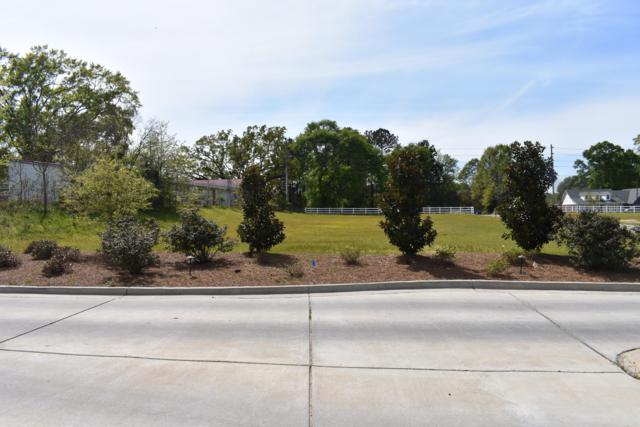 00 Old Hwy 11, Hattiesburg, MS 39402 (MLS #116978) :: Exit Southern Realty