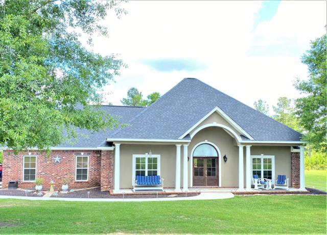 135 Joan Drive, Ellisville, MS 39437 (MLS #125582) :: Dunbar Real Estate Inc.