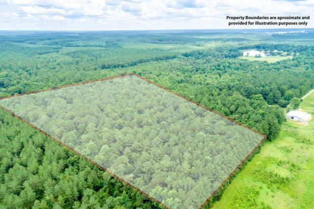 25.5 Acres Canty Rayborn Rd., Sumrall, MS 39482 (MLS #126354) :: Dunbar Real Estate Inc.