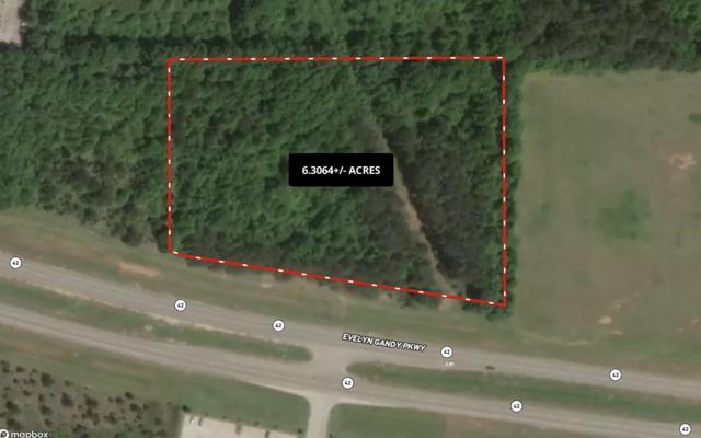 0 Evelyn Gandy Parkway, Petal, MS 39465 (MLS #127233) :: Dunbar Real Estate Inc.