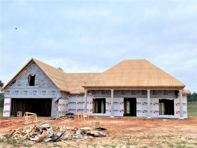 59 Joan Drive, Ellisville, MS 39437 (MLS #124620) :: Dunbar Real Estate Inc.