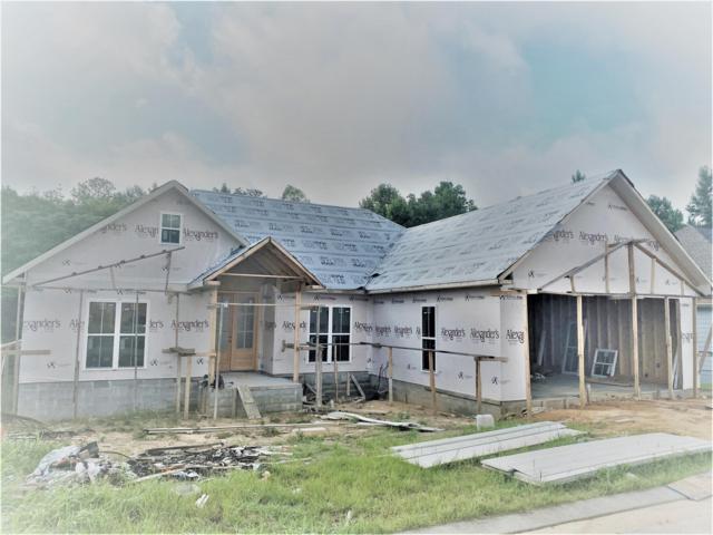 61 Caitlynn, Hattiesburg, MS 39402 (MLS #124947) :: Dunbar Real Estate Inc.