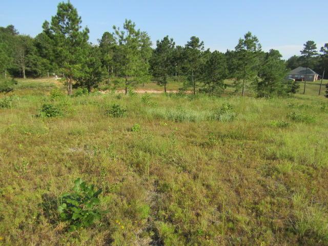 15 Mary Russell, Ellisville, MS 39437 (MLS #106359) :: Dunbar Real Estate Inc.