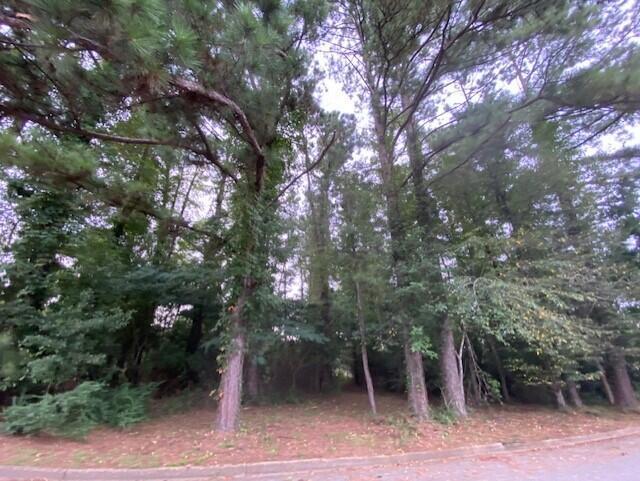 000 Clearview Cir., Columbia, MS 39429 (MLS #126339) :: Dunbar Real Estate Inc.