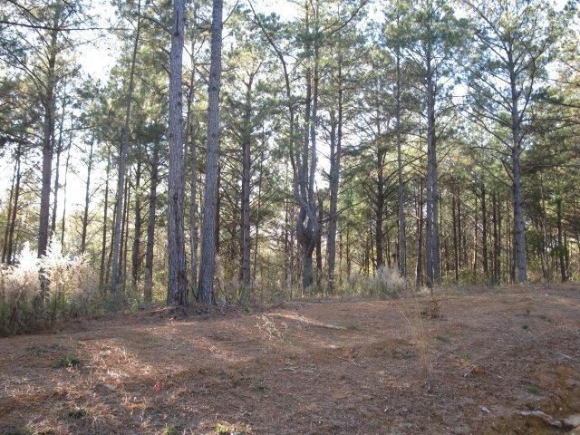 Lot 2 Parkview Estates, Ellisville, MS 39437 (MLS #76870) :: Exit Southern Realty