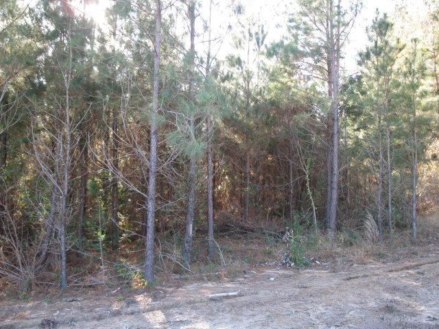 Lot 3 Parkview Estates, Ellisville, MS 39437 (MLS #76872) :: Exit Southern Realty