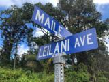 Leilani Blvd - Photo 1