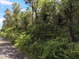 16-1569 Road 2 (Ao) - Photo 15