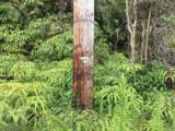 16-1569 Road 2 (Ao) - Photo 19
