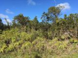 11-3145 Apuakehau Road - Photo 10