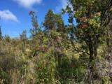 11-3145 Apuakehau Road - Photo 18