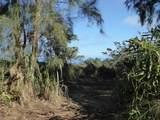 46-3621 Puaono Rd - Photo 2