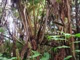 Ainahau Rd - Photo 2