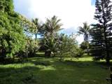 13-569 Pohoiki Rd - Photo 14