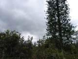 Road 11 (Pulelehua) - Photo 1