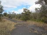 Tree Fern & Kona - Photo 3