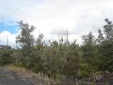 Tree Fern & Kona - Photo 4