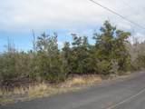 Tree Fern & Kona - Photo 7