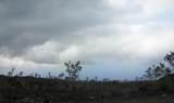 Tiki Ln - Photo 1