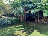 37 Uluwehi St - Photo 3
