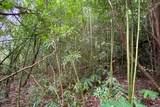 Puaono Rd - Photo 10