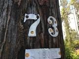 13-757 Malama St - Photo 17
