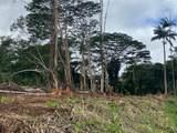 245 Wainaku St - Photo 21