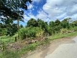 83-5404 Hawaii Belt Road - Photo 8