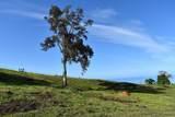 Lanakila Place - Photo 13