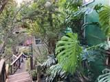 92-9058 King Kamehameha Blvd - Photo 2