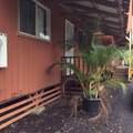 474-A Wainaku St - Photo 7