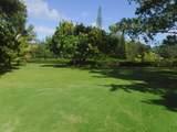 4901 Hanalei Plantation Rd - Photo 30