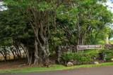 4701 Kawaihau Rd - Photo 1