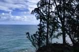 29-3818 Hawaii Belt Rd - Photo 11