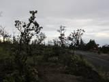 Pineapple Pkwy - Photo 5